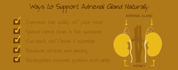 how to prevent adrenal gland disorders, best vitamins supplements for adrenal gland support, adrenal insufficiency, adrenal gland problems and disorders